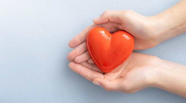 Kardiovaskulární systém v kondici